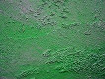 绿色膏药纹理 图库摄影