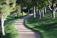 绿色自然道路 免版税库存照片
