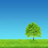 绿色自然风景 免版税库存照片