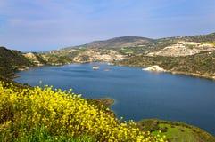 黄色花包围的美丽的山湖,塞浦路斯 库存照片