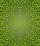 绿色花卉六角样式 免版税库存照片