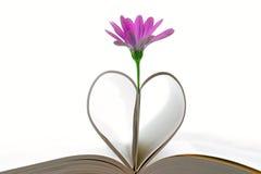 紫色花和书页 免版税库存图片