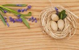 紫色花和坚果在巢 免版税库存图片