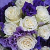 紫色花束 库存照片