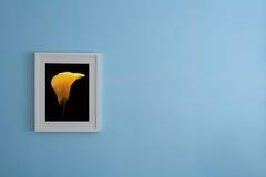 黄色花的图片在蓝色墙壁上的 免版税库存图片