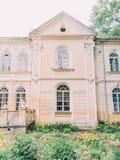 黄色花围拢的古老大厦在庭院里 库存图片