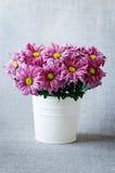 紫色花 库存图片