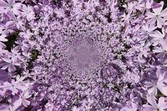 紫色花Funnell 皇族释放例证