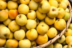绿色苹果篮子 免版税库存图片