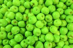 绿色苹果背景 免版税图库摄影