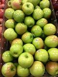 绿色苹果 图库摄影