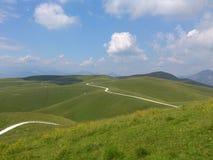 绿色草原之间的白色道路在蓝天下 库存照片