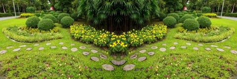 绿色草坪和树公园 免版税图库摄影