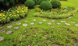 绿色草坪和树公园 免版税库存照片