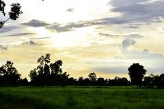绿色草甸、白色和灰色云彩、蓝天和橙色日落 免版税库存照片