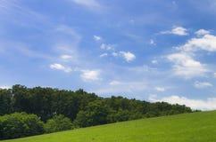 绿色草甸和森林有蓝天的 免版税库存图片