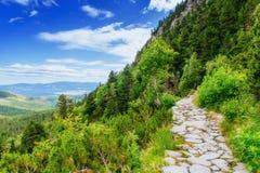 绿色草甸和蓝天与云彩在山乌克兰 免版税图库摄影