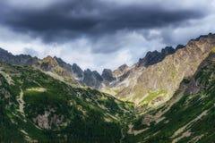 绿色草甸和蓝天与云彩在山乌克兰 免版税库存照片