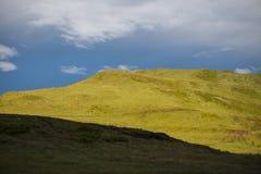 绿色草甸在日出, Giau通行证,白云岩, Ve的风暴日 免版税库存照片