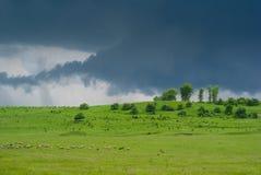 绿色草甸在雷天空下 库存照片