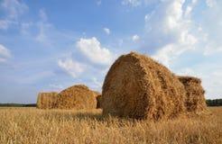 黄色草的干草堆 免版税库存照片
