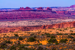 黄色草登陆红色峡谷拱门国家公园默阿布犹他 免版税图库摄影