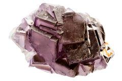 紫色荧石水晶 免版税库存照片