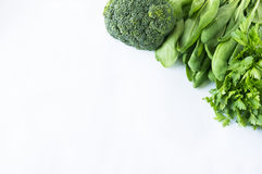 绿色菜、莴苣和草本与拷贝空间文本的 图库摄影