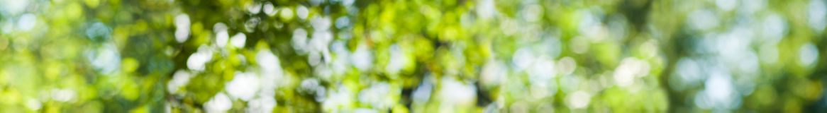 绿色菜的抽象背景图象 免版税库存照片