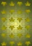 绿色葡萄无缝的背景叶子。 免版税库存图片