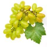 绿色葡萄 库存图片