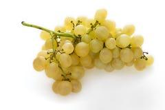 绿色葡萄 免版税库存图片