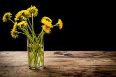 黄色蒲公英花束在玻璃的 库存照片