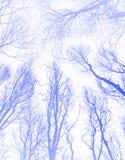 水色蓝色颜色异常的抽象样式 免版税库存照片