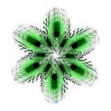 绿色蓬松和扭转的六针对性的星 库存图片