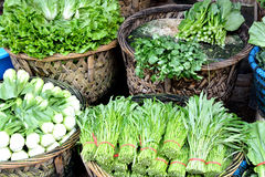 绿色蔬菜叶在市场上 库存照片