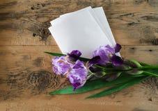 紫色虹膜花和一张空白的纸片花束  免版税库存照片