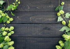 从绿色蛇麻草的边界在黑暗的土气木背景分支 免版税库存照片