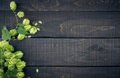 从绿色蛇麻草的边界在黑暗的土气木背景分支 免版税图库摄影