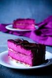 紫色蛋糕蛋白牛奶酥黑醋栗片断  库存照片