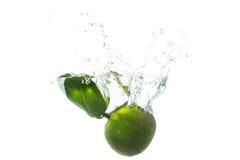 绿色蜜桔飞溅 库存图片