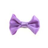 紫色蝶形领结 库存图片