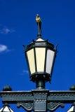 绿色街灯和鹦鹉 库存图片