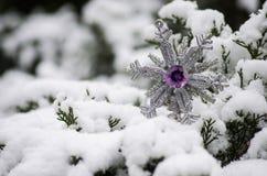 紫色被修宝石的雪花冬时 库存照片