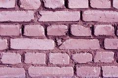 紫色被定调子的被风化的砖墙纹理 免版税库存图片