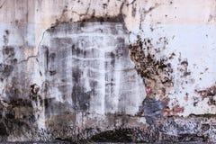 色被绘的简单老年迈的白色退了色在破裂的水泥具体房子墙壁表面背景的被风化的织地不很细样式 库存图片