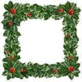 绿色被隔绝的霍莉叶子和莓果圣诞节框架  库存图片
