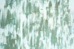 绿色被绘的墙壁 免版税库存图片