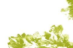 黄绿色被仿造的叶子 库存照片
