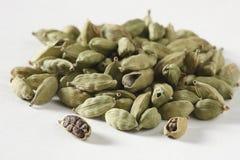 绿色豆蔻果实-一个普遍的印地安香料 库存图片